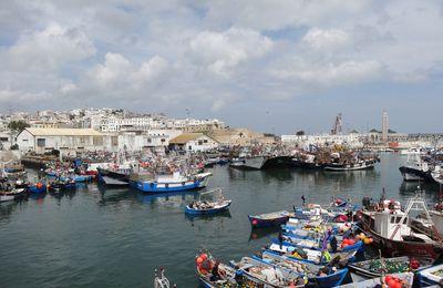 Le Port de pêche de Tanger toujours pas dans ses nouvelles installations (8 photos du 26 avril 2017)