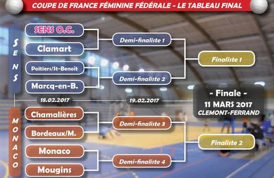 volley coupe france federale feminine senior photo picture