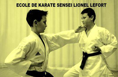 SENSEI LIONEL LEFORT - ECOLE DE LA VIE
