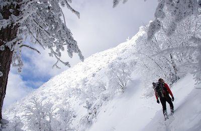Quai... Programme des randonnées pour le samedi 21 janvier 2017