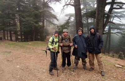 Vagues... Randonneurs de Skikda : Bivouac à Chélia avec 2338 m d'altitude  (112)