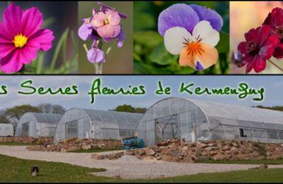 Les Serres fleuries de Kermenguy à Irvillac..