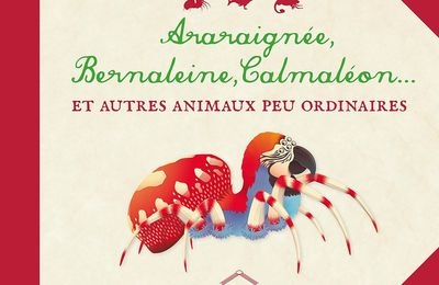 Araraignée, Bernaleine, Calmaléon...