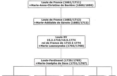 Louis XVI et Nantes N°245
