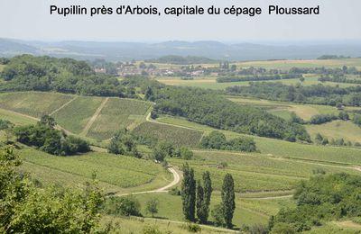 Annecy en passant par Arbois 17 au 24 juin 2015