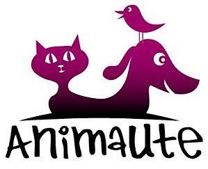 Pet sitting : Une garde conviviale pour vos animaux