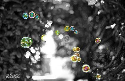 La vie sur la terre n'est qu'une bulle...