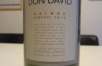 Argentine - Calchaqui Valley - Malbec 2013 - Don David - Bodega El Esteco
