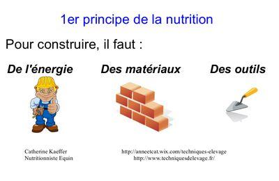 Le premier principe de l'alimentation