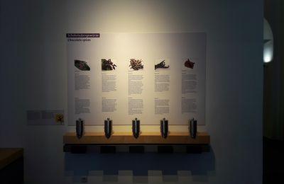 Musée du chocolat de Cologne en Allemagne