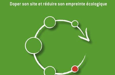 Eco-conception d'un site web