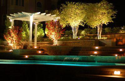 Design de piscines plusieurs styles
