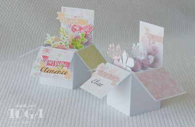 Cartes d'anniversaires Pop-up!!
