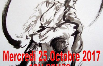 Stage Aikido 2017