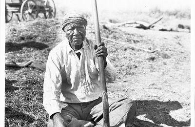 Bibliothèque indigène : Les Tohono O'Odham