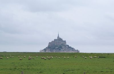 Quelques photos du Mont-St-Michel