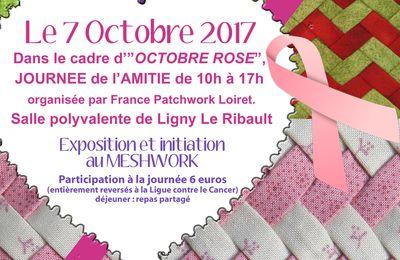 OCTOBRE ROSE à Ligny le Ribault le 07/10/17