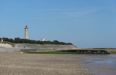Ile de Ré - 2.d/Saint-Clément des Baleines : le phare