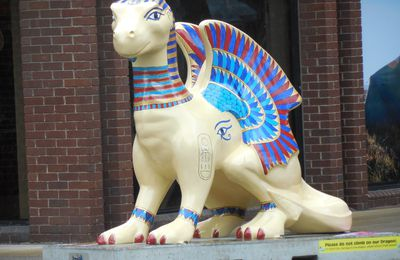 Norwich's colorful dragons !