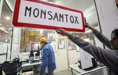 Action directe contre Monsanto!