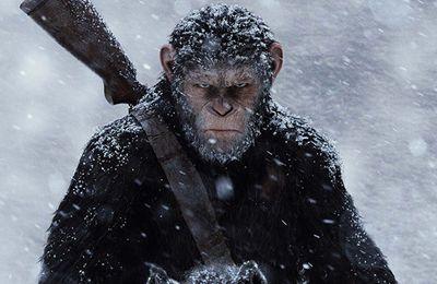 La planète des singes - Suprématie