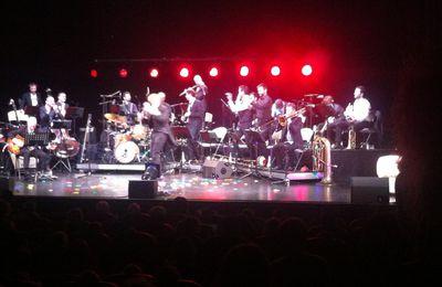 Sortie sympa : Le Carnaval Jazz des Animaux