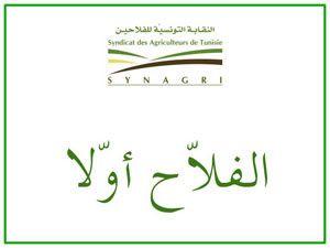 Tunisie:le SYNAGRI appelle à accélérer la mise en œuvre d'une politique agricole cohérente