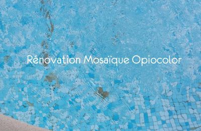 Rénovation piscine en mosaique Opiocolor par Ô Concept