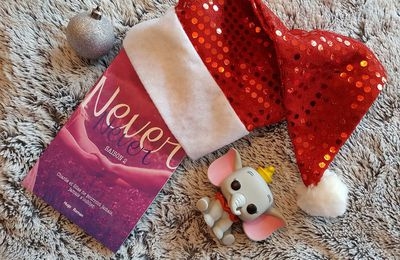 Never Never saison 2 - Colleen Hoover, Tarryn Fisher