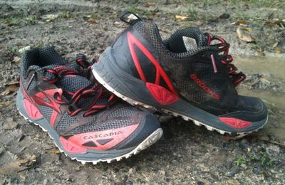 TEST Brooks Cascadia9