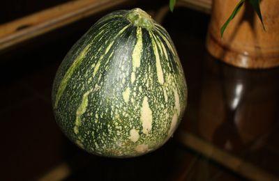 Les petits pots de Soan: Purée de Ziromo, pommes de terre, brocolis, poivre