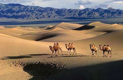Entre Tien Shen et Altaï
