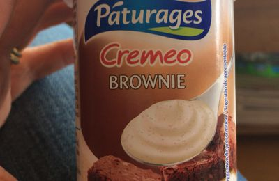 Test yaourt cremeo brownie pâturage 🍴
