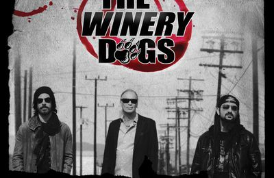THE WINERY DOGS in tour in Europe