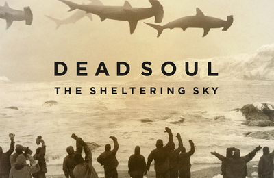 """CD review DEAD SOUL """"The Sheltering Day"""""""