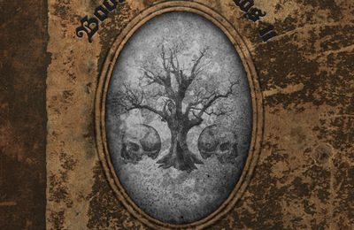 "CD review ZAKK WYLDE ""Book of Shadows II"""
