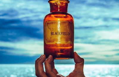 "CD review BLACKFIELD ""V"""