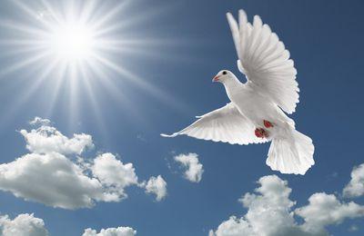 Le Saint Esprit, l'ami fidèle