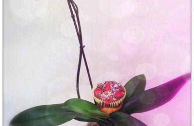 Muffins chocolat vanille avec un insert de fraise