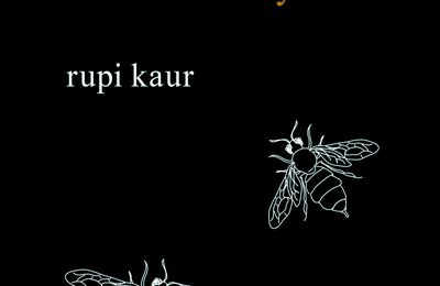 lait et miel - milk and honey - Rupi Kaur