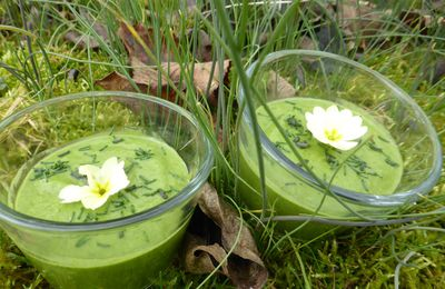 PLANTES SAUVAGES & SMOOTHIE