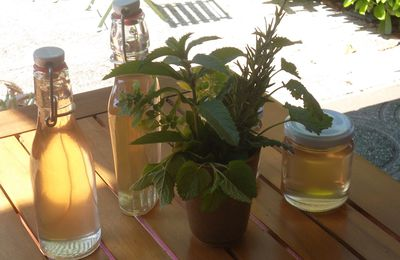 Herbettes et improvisations gourmandes
