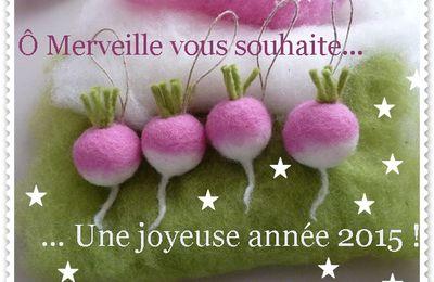 Vœux feutrés pour 2015