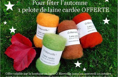 Surprise d'automne : 1 pelote de laine cardée offerte