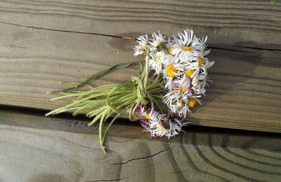 Le bouquet oublié