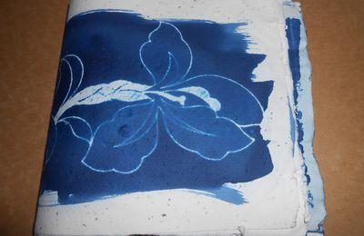 stages à Montreuil Bellay et essai de cyanotypie sur mes papiers