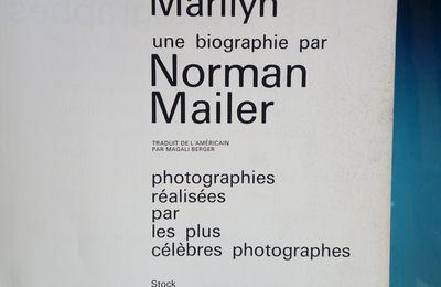 Chiner sa bibliothèque - saison 02 - épisode 28 – Norman Mailer est mienne