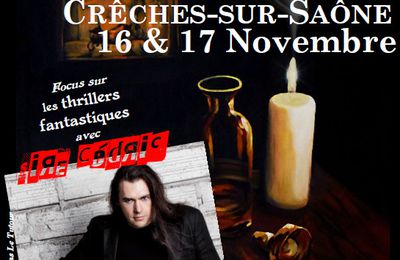 Affiches 2013