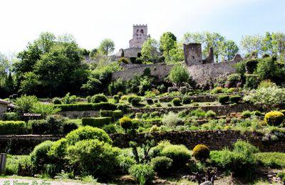 Le Vieil Ecotay avec vue sur le château (42600 Loire) village médiéval et pittoresque