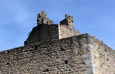 Le Château d'Ecotay l'Olme (42600, Loire)